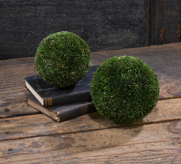 Natural Topiary Ball w/ Hanging String