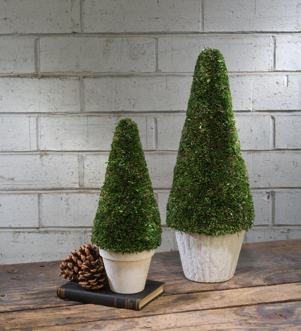 Set/2 Natural Topiary Cone Trees w/ Pot
