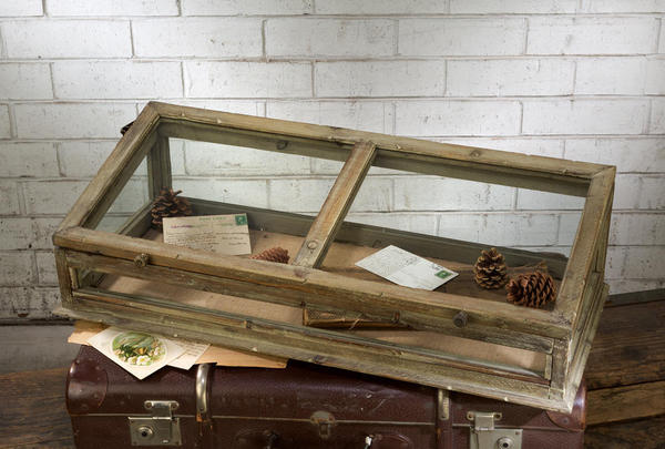Vintage Style Table Top Glass Case